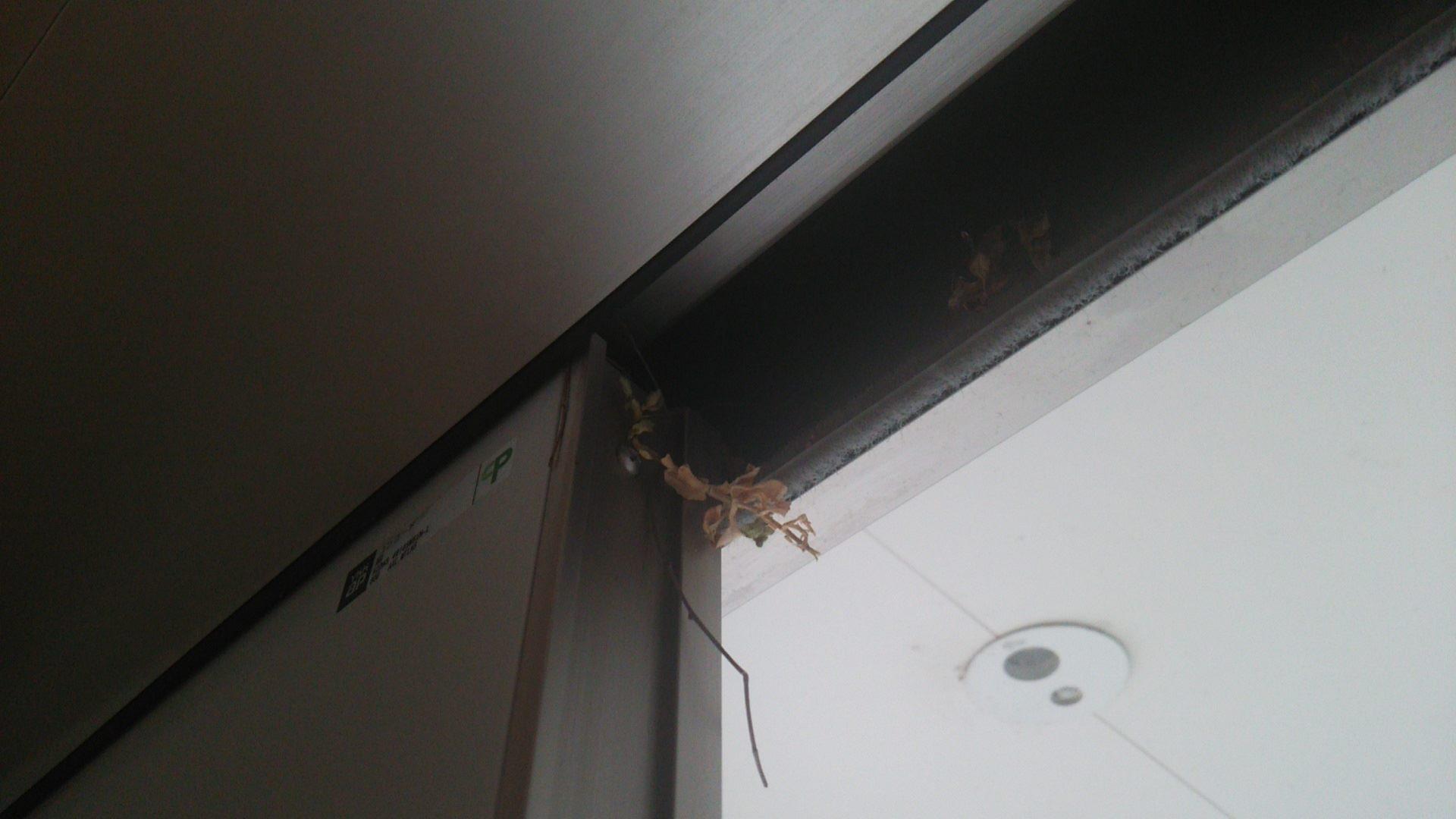 鳥の巣_引き戸_玄関_ドア_なんども